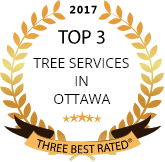 tree services ottawa logo 2017